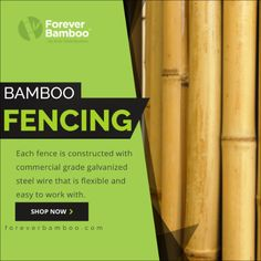 Shop Our Bamboo Fencing and Create a Strong Beautiful Bamboo Fence Fence Quotes, Bamboo Fencing, Fence Panels, Design Shop, Galvanized Steel, Tropical Paradise, Flexibility, Shop Now, Backyard