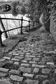 The path back by DevilFishMark, Manchester, UK.