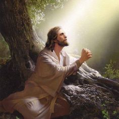 jesus praying fervently in the garden of gethsemane Pictures Of Jesus Christ, Religious Pictures, Religious Art, Jesus Our Savior, Jesus Is Lord, Jesus Painting, Jesus Christus, Biblical Art, Bible Art