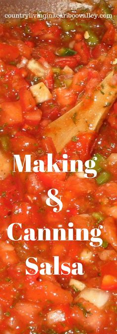 The BEST Salsa Recipe - How to Make Salsa and How to Can Salsa!