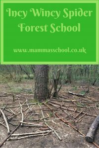 Incy Wincy Spider forest school, learn spiders outdoor learning nature learning mini beasts www.mammasschool.co.uk