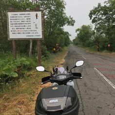 釧路湿原の中通って宿に向かいます()ゞ 昨年台風で冠水通行止めでしたが今年は大丈夫でも天気悪く雨ポツポツ