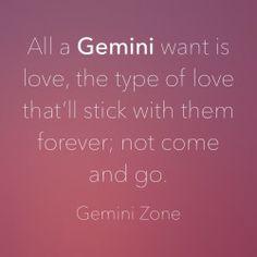 Gemini Zone