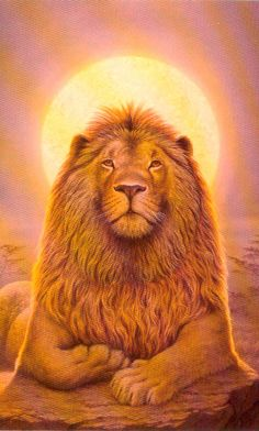 Lion of Judah painting. Judah And The Lion, Lion And Lioness, Leo Lion, Colorful Animals, Cute Animals, Leo Sun Sign, Moon In Leo, Astrology Leo, Prophetic Art