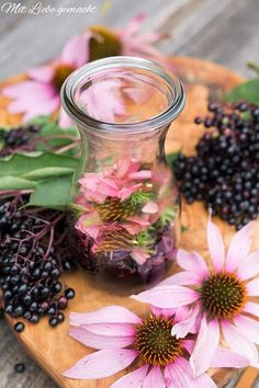 Immune vinegar: strengthen your health with Echinacea & Elderberry! Hydroponic Gardening, Hydroponics, Indoor Garden, Outdoor Gardens, Types Of Plants, Small Gardens, Growing Plants, Amazing Gardens, Home Remedies