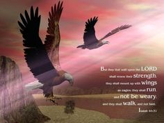 Isaiah 40:31  But those who wait on the LORD Shall renew their strength; They shall mount up with wings like eagles, They shall run and not be weary, They shall walk and not faint.  ..........my very favorite scripture of comfort