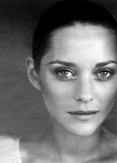Marion as Betha Marion Cotillard, Norman Lindsay, Photo Star, Black And White Portraits, Cute Girl Face, Beauty Women, Movie Stars, Portrait Photography, Beautiful People