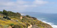 Facts at a Glance. Torrey Pines, At A Glance, Southern California, Dreaming Of You, Facts, City, Water, Outdoor, Gripe Water
