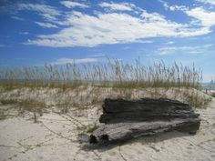 10 Of The Best Secret Beaches In Florida To Escape The Tourists | Only In Your State