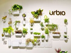Transform Walls to Indoor Gardens with Versatile Urbio System | Inhabitat - Sustainable Design Innovation, Eco Architecture, Green Building