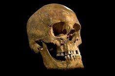 Richard III. starb auf Schlachtfeld einen grausigen Tod - Yahoo Nachrichten Deutschland
