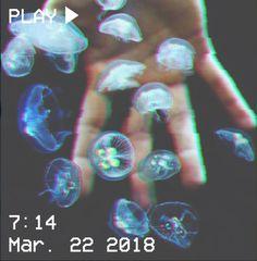 Photography Aesthetic Ocean Ideas For 2019 Light Blue Aesthetic, Flower Aesthetic, Red Aesthetic, Aesthetic Photo, Aesthetic Pictures, Blue Aesthetic Tumblr, Photography Aesthetic, Aesthetic Pastel, Blue Feed