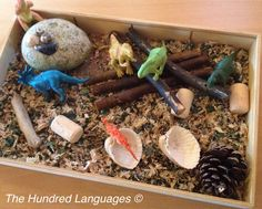 The Hundred Languages of Children: Small world play ideas