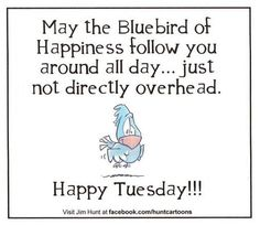 Discover and share Happy Tuesday Funny Quotes. Explore our collection of motivational and famous quotes by authors you know and love. Happy Tuesday Pictures, Happy Tuesday Quotes, Tuesday Humor, Sunday Quotes, Daily Quotes, Great Quotes, Life Quotes, Tuesday Images, Inspirational Quotes