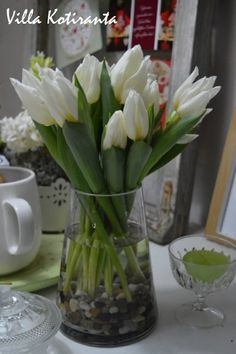 Valkoiset tulppaanit jouluksi / White tulips for Christmas White Tulips, Christmas Table Settings, Christmas Home, Flower Arrangements, Glass Vase, Flowers, Home Decor, Floral Arrangements, Decoration Home