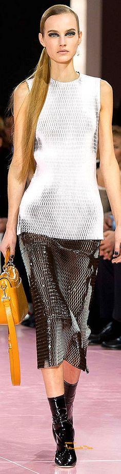 #PFW Christian Dior Fall 2015 RTW ♔THD♔