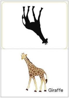 matching pictures to shadows worksheets Fun Worksheets For Kids, Activities For Kids, Kids English, Forest Illustration, Puzzle Books, Alphabet Activities, Toddler Learning, Jungle Animals, Science For Kids