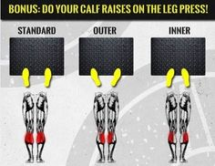 Why you Should Pay Attention to The Calf Muscles? - Health and Fitness articles - Oubalifestyle Leg Day Workouts, Gym Workout Tips, Weight Training Workouts, Fit Board Workouts, Workout Board, Quick Workouts, Cardio Gym, Tabata, Crossfit