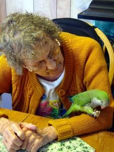 Poppit with one of our hospice patients
