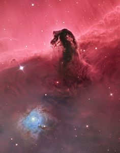 Horsehead Nebula By Bill Snyder