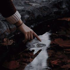 Autumn Aesthetic, Book Aesthetic, Aesthetic Images, Character Aesthetic, Aesthetic Photo, Slytherin Aesthetic, Harry Potter Aesthetic, Twilight, Light In The Dark
