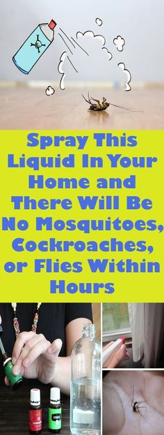Spray This Liquid In Your Home and There Will Be No Mosquitoes, Cockroaches, or Flies Within Hours