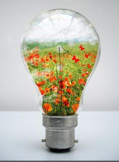 My world in a Light Bulb Photo Manipulation, many tutorials on how to put scenes & photographs in a lightbulb