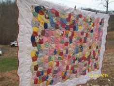 Apple Core Quilt by: Shelia A. Taylor