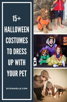 15  Halloween Costume ideas if you want to dress up with your pet. Dog costumes, cat costumes, horse costumes, and people costumes! #halloweencostume #diycostume #halloween Horse Costumes, Family Costumes, Family Halloween Costumes, Diy Stuffed Animals, Costume Ideas, Dress Up, Cosplay, Children, Cats