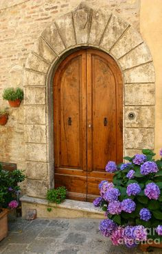 Hydrangea Flowers Photograph - Door, Tuscany by Holly C. Grand Entrance, Entrance Doors, Doorway, Cool Doors, Unique Doors, Door Knockers, Door Knobs, Portal, When One Door Closes