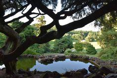 Deep Cut Gardens New Jersey