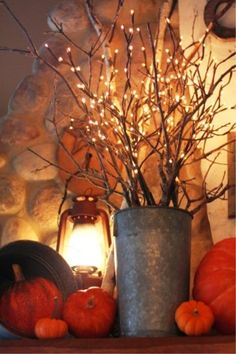 Love these twinkle branches!