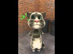 Die 40 Besten Bilder Von Video Gute Besserung Get Well Youtube