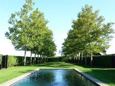 Edmund Hollander Landscape Architect Design P.C. - Recent 2011 Projects - Tailored Elegance