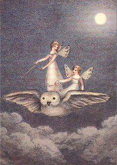 Illustration by Amelia Jane Murray.