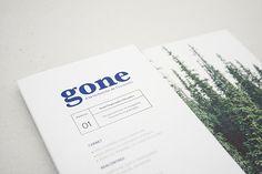 Gone Magazine // Patagonia by Quentin Moretti, via Behance