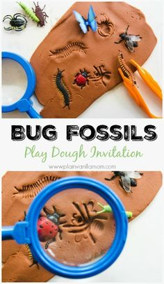 Explore Bugs with this Bug Fossils Play Dough Invitation. Includes play ideas and book pairings.
