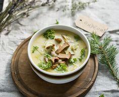 Zupa kurkowa- zupa z kurkami