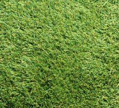 Kasthall Moss Hand Tufted Rug