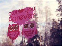 owl love you forever.