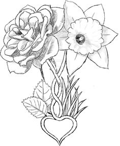 Flowers Tattoo Drawing photo - 3 - Aster and daffodils tattoos (Hailey and Kj . - Flowers Tattoo Drawing photo – 3 – Aster and daffodils tattoos (Hailey and Kj … – Marig - Gladiolas Tattoo, Narcissus Tattoo, Aster Tattoo, Marigold Tattoo, Daffodil Flower Tattoos, Carnation Tattoo, Birth Flower Tattoos, Narcissus Flower, Baby Tattoos