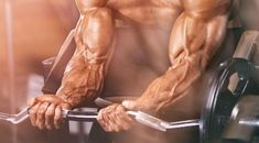 15 Exercise To Improve Your Forearm Workout Best Forearm Exercises, Forearm Workout, Forearm Muscles, Dumbbell Workout, Back Muscles, Dumbbell Set, Kettlebell, Steve Smith, Biceps