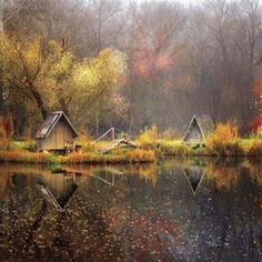 Gabor Dvornik Photographer Profile -- National Geographic Your Shot