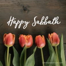 Happy Sabbath Images, Happy Sabbath Quotes, Bon Sabbat, Shabbat Shalom Images, Good Morning Happy Saturday, Sabbath Rest, Morning Blessings, Trumpets, Sabbats