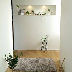 Entrance/観葉植物/IKEA/ニッチ/間接照明/グリーンインテリア...などのインテリア実例 - 2017-11-14 23:45:36