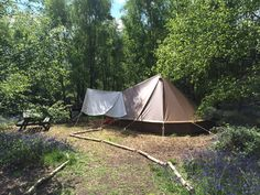 Eco camp uk at beech estate woodland campsite south east england east sussex original