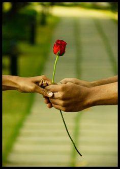 sweet-angel-1:      ★★★    True love begins when nothing is looked for in return.