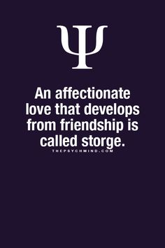 Storge...Affectionate love developed from friendship.