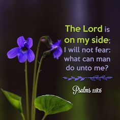 The Lord is on my side: I will not fear; what can man do unto me? Psalms 118:6