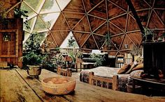 Living in a round dome-like structure. Wooden finish with lots of greens.. the plants keep the air fresh and are good for the eyes. What i'd give to live in such a beautiful home.